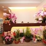一樓櫃台|新竹愛生美皮膚科醫學美容診所